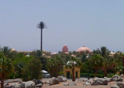 Egypt 2010 (24)