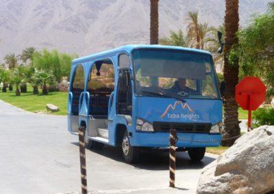 Egypt 2010 (33)