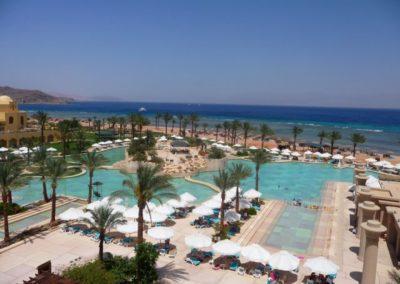 Egypt 2010 (39)