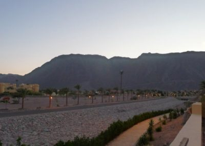 Egypt 2010 (58)