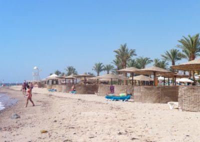 Egypt 2010 (60)