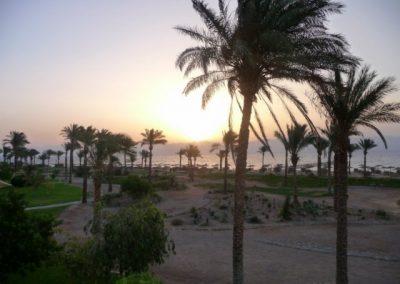 Egypt 2010 (64)