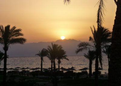 Egypt 2010 (65)