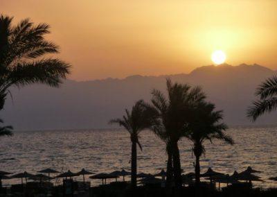 Egypt 2010 (66)