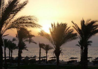 Egypt 2010 (69)