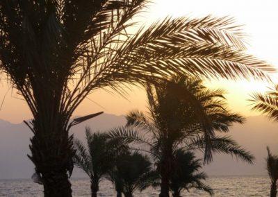 Egypt 2010 (70)