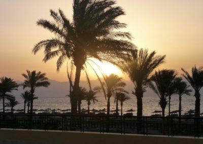 Egypt 2010 (71)